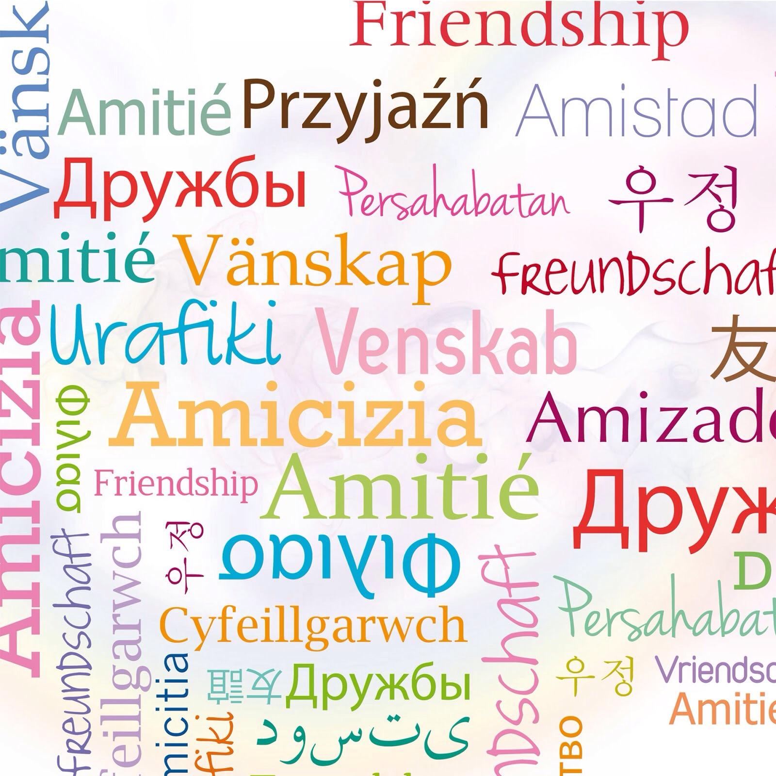 Frasi sull'Amicizia vera da dedicare agli amici: Le più ...