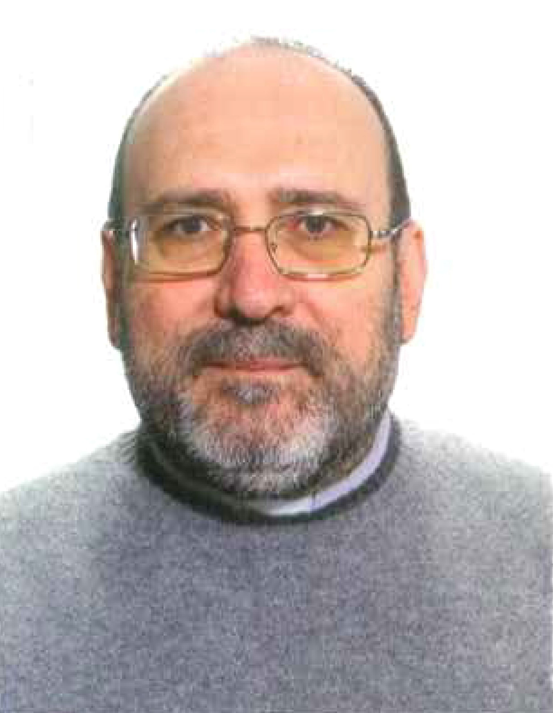 Domenico Marrone